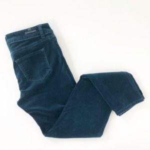 LC Lauren Conrad Velour Blue Skinny Pants Size 6
